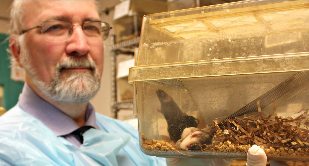 A Moment With Dr. Thomas Saunders of the Transgenic Animal Model Core